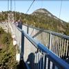 Photo of bridge at Grandfather